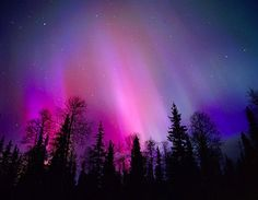 Northern Lights Aurora Borealis violet | ... the sky like this purple/violet aurora and may also flash, or pulse