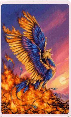 Phoenix - artist? (nolink)