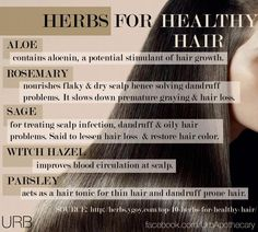 paleo hair, skin and beauty herbs