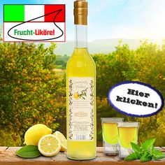 Dem italienischen Likörklassiker Limoncello wurde hier eine erfrischende Note von wilder Minze beigefügt! Hier klicken: http://blogde.rohinie.com/2013/02/grappa/ #Italien #Grappa #Spirituosen #Likoere #Cremelikoere #Kraeuterlikoere #Fruchtlikoere
