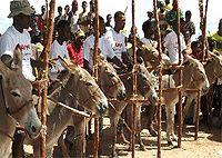 Image result for donkey race Donkey, Camel, Racing, Animals, Image, Running, Animales, Animaux, Donkeys