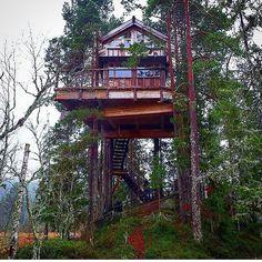 Norway's finest @tretopphytter.no  @treehousepete / @nelsontreehouse #treehouseclub
