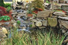 Our pond. The Water's Edge Salon and Spa in Derry, New Hampshire.