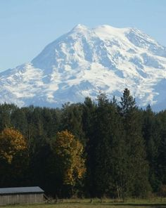 Mt Rainier - I see it all the time, now I need to get on it.