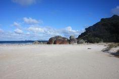 skeaky beach, Australia    En nuestra web encontrarás los mejores cursos en las mejores escuelas de Sydney y Merlbourne:  http://es.languagebookings.com/search/cursos-ingles/australia/?startdate=2013-02-25=2=1