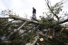 Declaran estado de emergencia en el noroeste de Florida por tornado