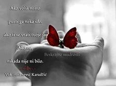 Ako voliš nešto pusti ga neka ide, ako ti se vrati tvoje je. Ako ne, nikada nije ni bilo. - Vuk Stefanović Karadžić Pratite me na fejsbuk stranici i tviteru: Phttps://www.facebook.com/beskrajnemudrosti tviteru:https://twitter.com/BesMudrAnci