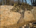 Great idea for that blank stone wall  Ideas   Home Design, Garden & Architecture Blog Magazine - Page 9