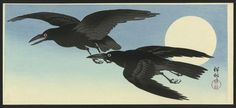 View and purchase art by Ohara Koson and other Japanese artists. Extensive online gallery includes hundreds of fine prints. Japanese etchings, wood block, silkscreen, stencil from famous artists. Japanese Prints, Japanese Art, Ohara Koson, Quoth The Raven, Crows Ravens, Free Illustrations, Woodblock Print, Print Artist, Asian Art