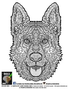 coloring on pinterest free adult coloring pages adult coloring