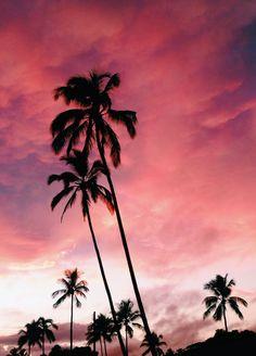 alohakatherine:Yesterday was incredible!