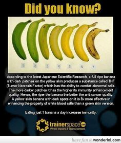 something you maybe didn't know about bananas.
