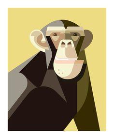 Chimpanzee, Flora and Fauna series, Mammals edition - Josh Brill