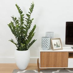 Line – Elements of Design Urn Planters, Timber Flooring, Elements Of Design, Floating Nightstand, Floors, Table, Furniture, Home Decor, Wood Flooring