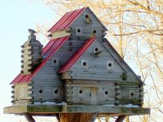Large Canadian Bridhouse with guests!