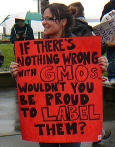 California Voters Vs. Monsanto? GMO Ballot Initiative Coming in November