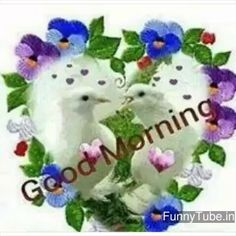Good morning wishes images photo with thoughts quotes whatsapp status Cute Good Morning Quotes, Sunday Quotes Funny, Good Morning Good Night, Good Morning Wishes, Birthday Name Song, Farming, Morning Greetings Quotes, Morning Messages, Wishes Images