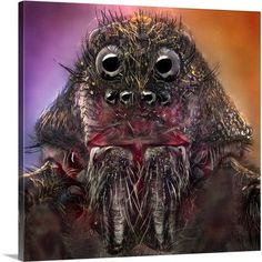 Canvas On Demand The Monster by Jorge Fardels Photographic Print on Canvas Size:
