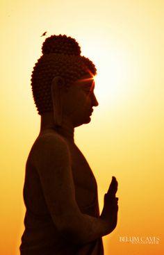 Teaser No. 2 Enlightened Buddha | Belum Caves |