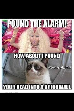 How about I pound your head instead? - Funny Cat Quotes Source by Cat_Houses videos wallpaper cat cat memes cat videos cat memes cat quotes cats cats pictures cats videos Grumpy Cat Quotes, Funny Grumpy Cat Memes, Cute Cat Memes, Cat Jokes, Funny Animal Jokes, Cute Funny Animals, Funny Animal Pictures, Funny Relatable Memes, Funny Cute