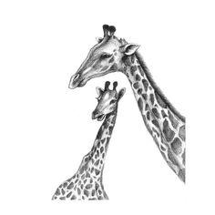 8x10 Print Mother and Baby Giraffe Pencil por HansMyHedgehog, $35.00