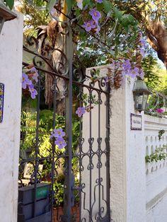 Campanitas lilas en un portal