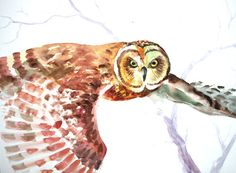 Flying owl Original watercolor painting 15 X 20 in by ORIGINALONLY, $42.00