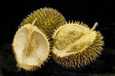 Durian | 20 Awesome Fruits You've Never Even Heard Of