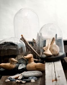 Find these jars at thrift stores w/non-working clocks and repaint the brass bottoms - presto ... great bell jar!