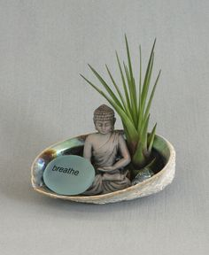 "Ocean inspired terrarium with abalone shell holder, Buddha figurine, and an aqua colored ""Breathe"" rock. Air plant included."