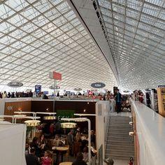 Charles  de Gaulle International Airport.