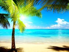 Best Of Wallpaper Beach Tropical Beach Background Images pictures - Wallpaper Themes Strand Wallpaper, Beach Wallpaper, Of Wallpaper, Nature Wallpaper, Beach Shower Curtains, Beach Background, Tropical Background, Background Images, Theme Background