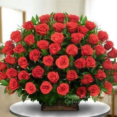 "The fragrance of God. is like a ""bouquet of roses."" Lord, ur the Rose of Sharon,"" & a sweet- smelling savour! Beautiful Rose Flowers, Love Flowers, My Flower, Beautiful Gif, Deco Floral, Floral Design, Happy Birthday In Spanish, Large Flower Arrangements, Birthday Wishes"