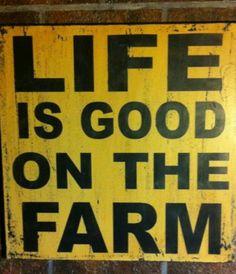Farm life :-)