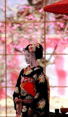 Geisha..