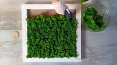 Moss Wall Art, Moss Art, Garden Wall Designs, Moss Decor, Indoor Water Garden, Succulent Planter Diy, Garden Cafe, Moss Garden, Make Pictures
