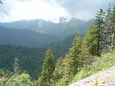 Hiking in the Great Smoky Mountains National Park - Wikipedia, the free encyclopedia