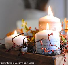 November 9, 2013 Jennifer Rizzo Town and Country Living: How to create a fall centerpiece
