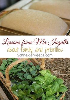 Here are 11 Lessons from Ma Ingalls that will help you live a more intentional life. The Little House books aren't just for children! Natural Living, Simple Living, Modern Homesteading, Backyard Farming, Permaculture Garden, Natural Parenting, Parenting Ideas, Cleaners Homemade, Fruit Garden