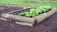 Logs http://www.rodalesorganiclife.com/garden/5-raised-bed-designs-you-can-make-in-an-afternoon/logs