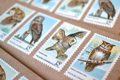 Owl Stationery Set, Vintage Postage Pre-Stamped, Rustic Nature Note, Spring Baby Shower Mothers Day Gift