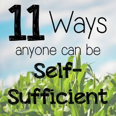 11 ways anyone can be self-sufficient - even if you live in an apartment in the city.