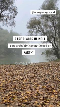 Travel Destinations In India, Travel Tours, Travel And Tourism, Solo Travel, India Travel, Fun Places To Go, Beautiful Places To Travel, Best Places To Travel, Travel Around The World