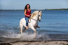 Paso Fino Horse.  ANTIDOTO DE BESILU Woman Riding Horse, Riding Horses, Equine Photography, Cowgirls, Creatures, Fur, Dance, Couture, Beach