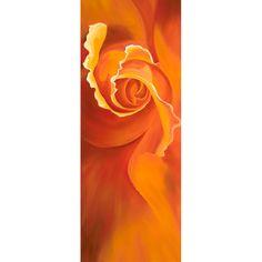 Serpentine a limited edition print of an orange rose by Karen Hollis