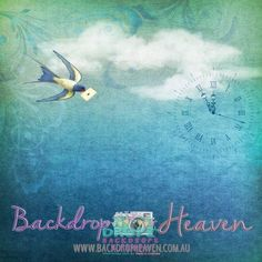 Swallow Bird Messenger  #backdrops #backdrop #scenicbackground #photographybackdrop #photobackground #dropzbackdropsaustralia #dropz #photography #dropzbackdrops #backdropsaustralia