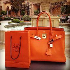 My dream purse Hermes Birkin   @doreen2014 I would like one in purple or Hermes orange :)