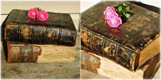 Family Size Holy Bibles Dated 1880, 1881