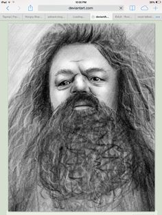 youre a wizard harry - Rice&Caricature Harry Potter Sketch, Harry Potter Planner, Saga Harry Potter, Harry Potter Printables, Harry Potter Gifts, Harry Potter Characters, Harry Potter Memes, James Potter, Harry Potter Painting