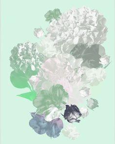 Contemporary photography and artwork Mauren Brodbeck, Loyalland, Untitled 05 Contemporary Photography, Contemporary Art, Filmmaking, Abstract, Artist, Artwork, Flowers, Color, Cinema